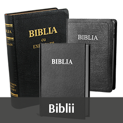 Category-Bibles